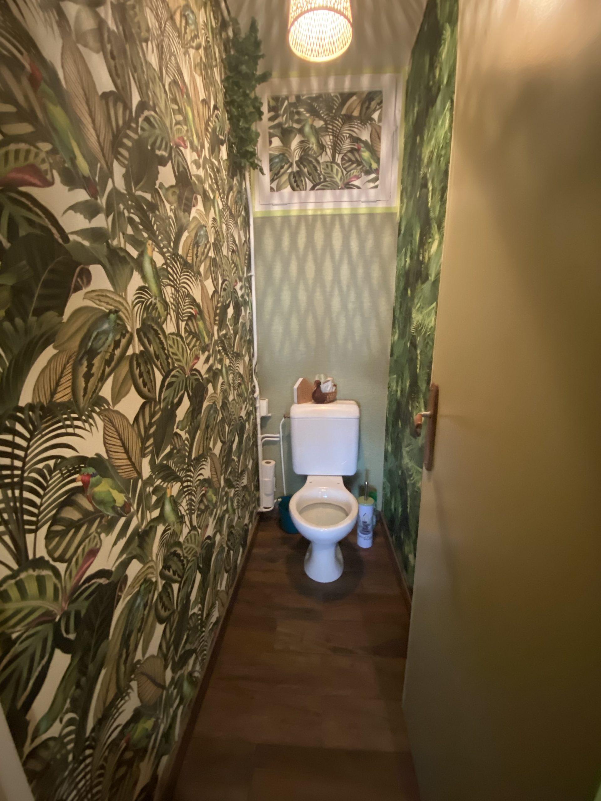 rénovation d'un WC esprit Jungle